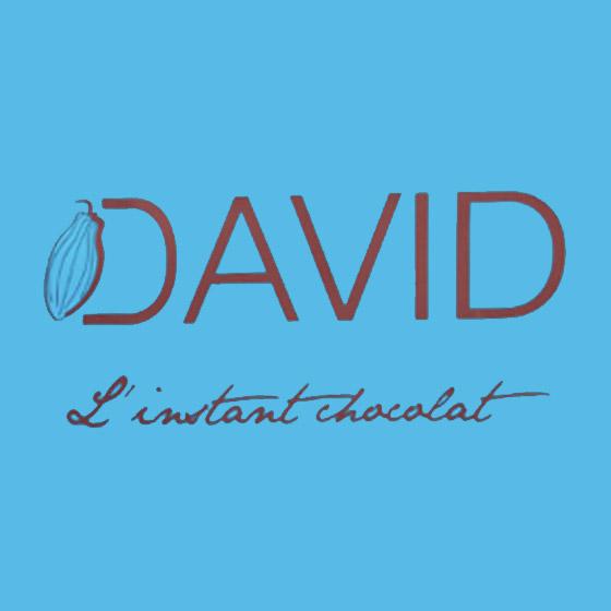 sponsor-david-560